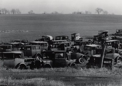 antique cars, some partially stripped, on the edge of a field; bare trees beyond horizon