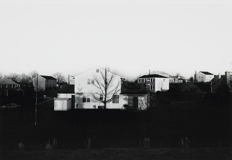 suburban houses; light sky; dark ground; bare trees