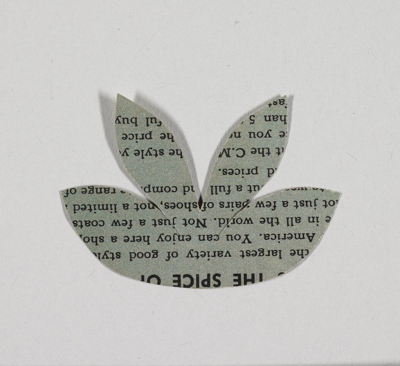 spray of four leaves; scrap of printed paper-black on white on one side, black on blue on opposite side