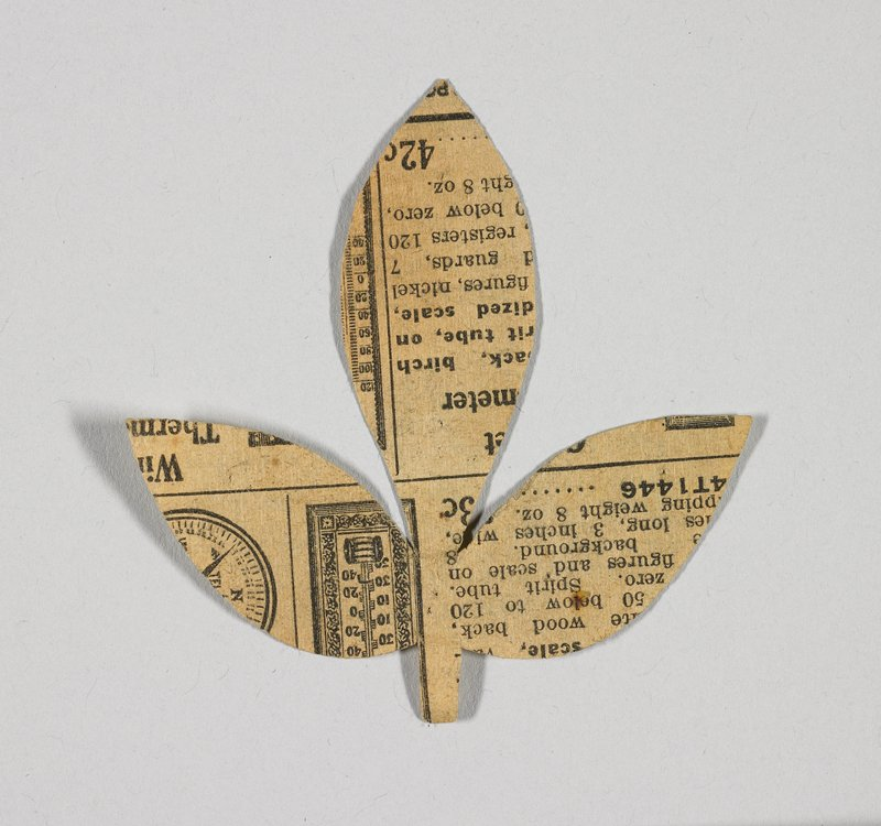 three leaves on a short stem; printed newsprint