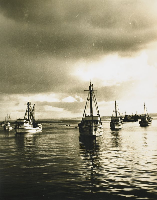 """fishing fleet in harbor; """"Santa Rosa"""" is boat at center front; """"Diana"""" at front left; hills visible in far distance; dark clouds, top and left side"""