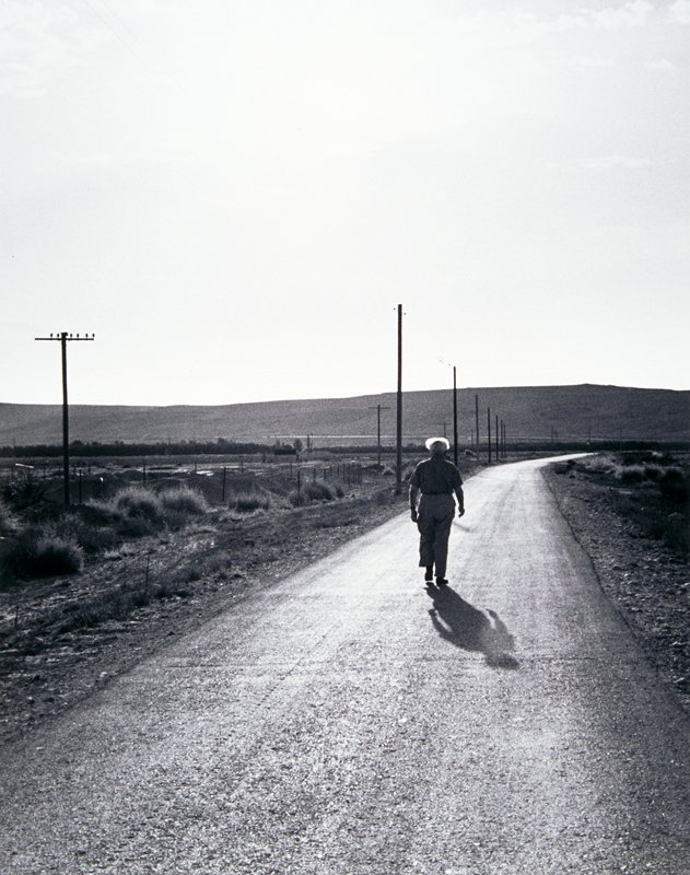 man seen from behind walking down a narrow, deserted road with telephone poles at left