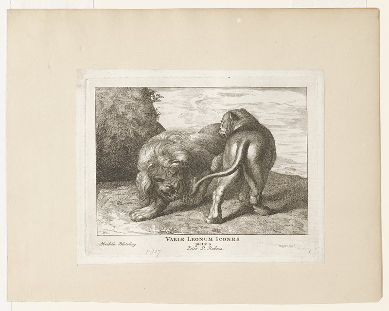 two lions on a cliff; left (male) facing viewer; right (female) facing away