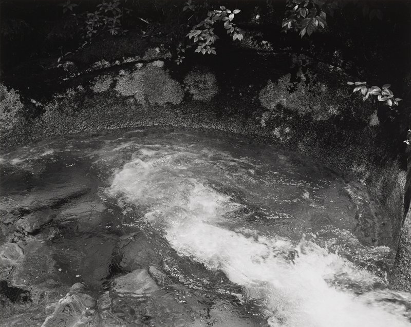 water basin with flowing water in LRC; moss and tree leaves at top