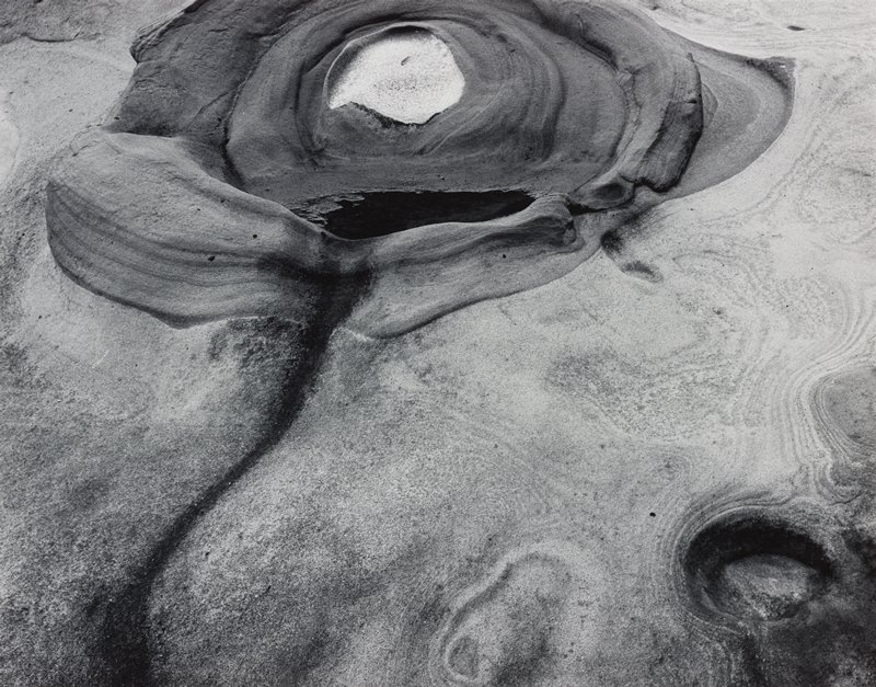 abstract natural forms--rock?; circular shape, LRC; light circular shape at top center surrounded by darker rounded elements