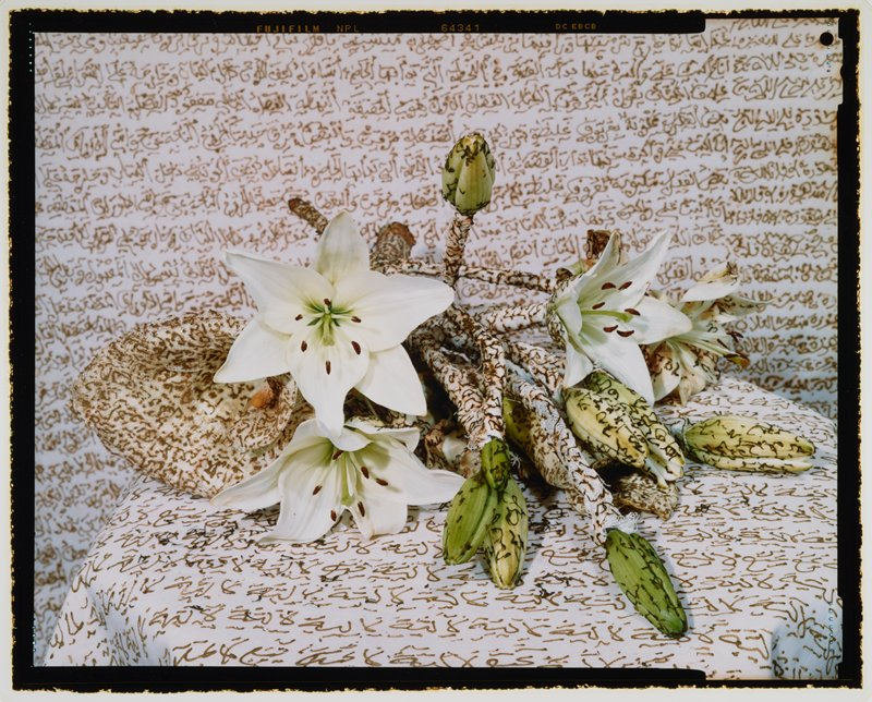 white lillies, some wrapped in gauze, on a white ground; buds, stems, gauze and ground have lines of brown text overall