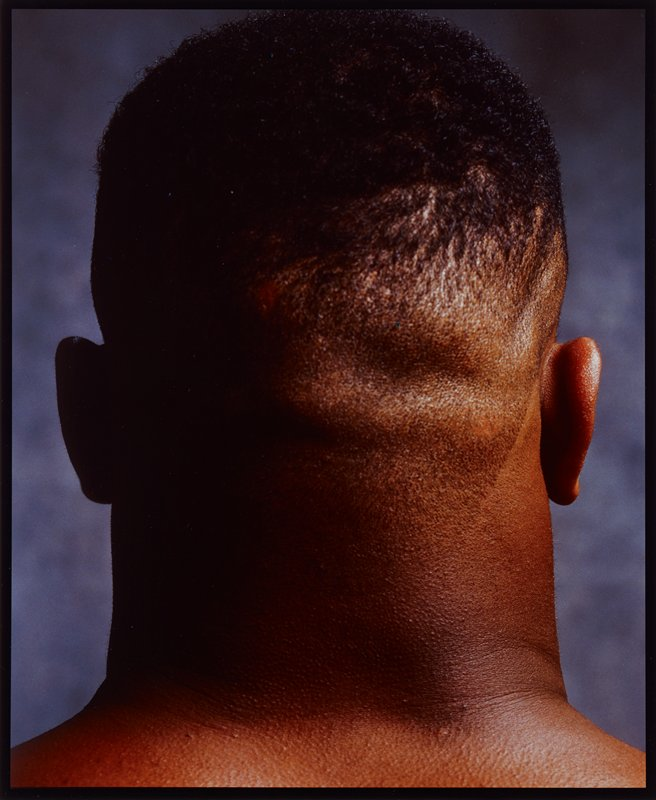 back of head of black man with thick neck; grey mottled ground