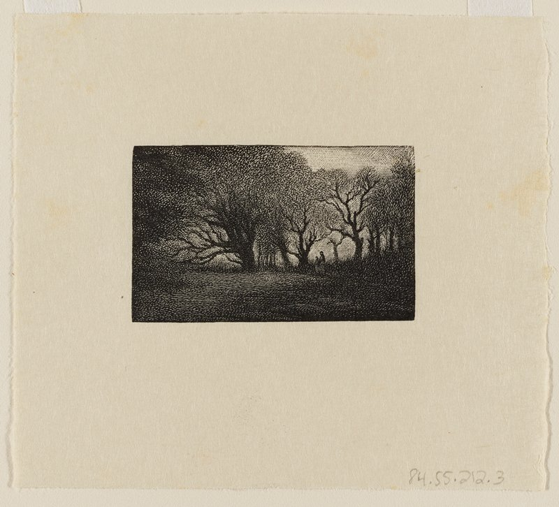 grove of trees with thin leaves; two small figures R of C; dark, heavily shaded image
