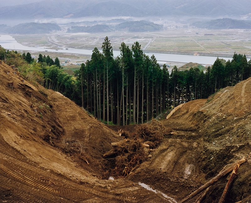 excavated dirt, logs and tree roots in foreground with valley at center; tall pine trees in middle ground--tallest at center; view of water, fields and city in fog in background