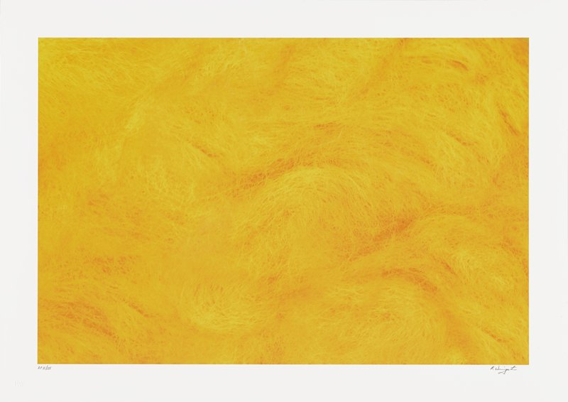 abstract image; detailed view of orange fibers