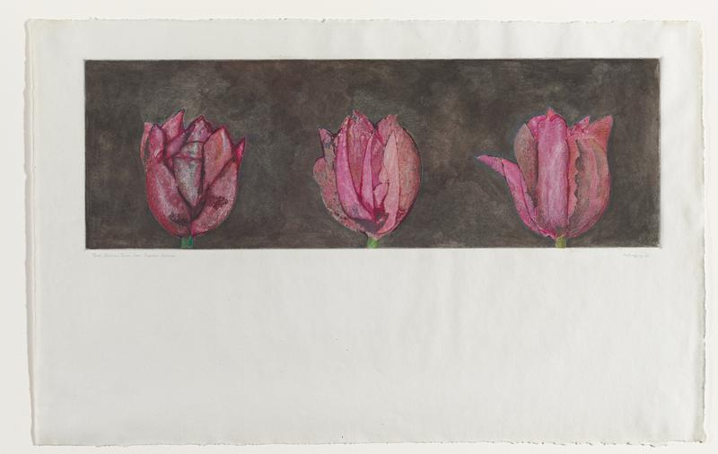 Image of three pink tulips on a back ground; image is printed on the top half of the sheet