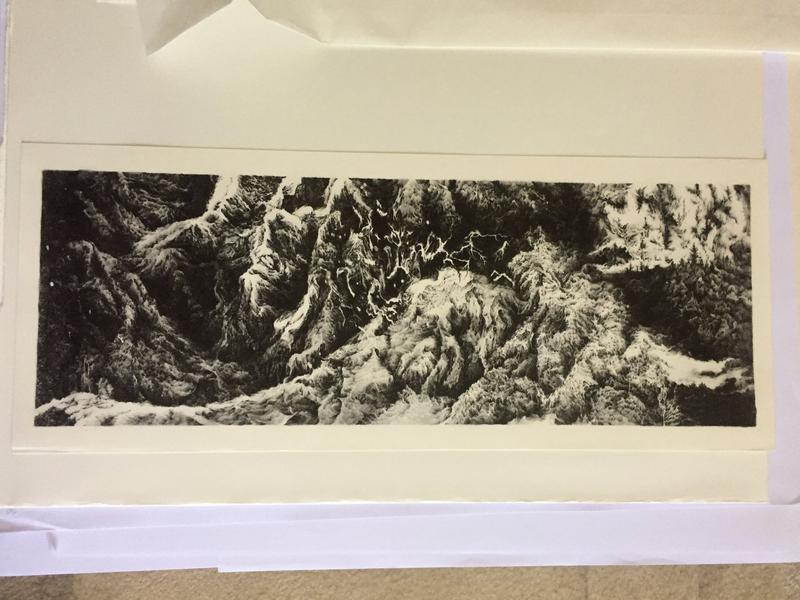 panoramic image of curving, twisting rocky landscape rendered in black and white pigments
