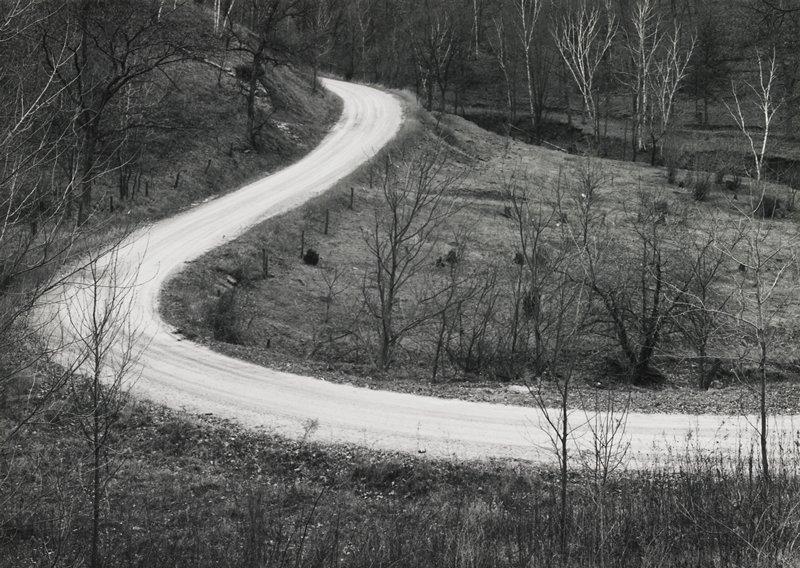 landscape, winding forest road