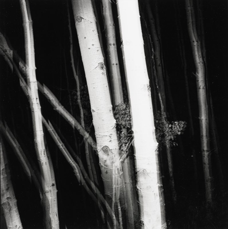 a portfolio of photographs published by the Photography Department of the School of the Art Institute of Chicago
