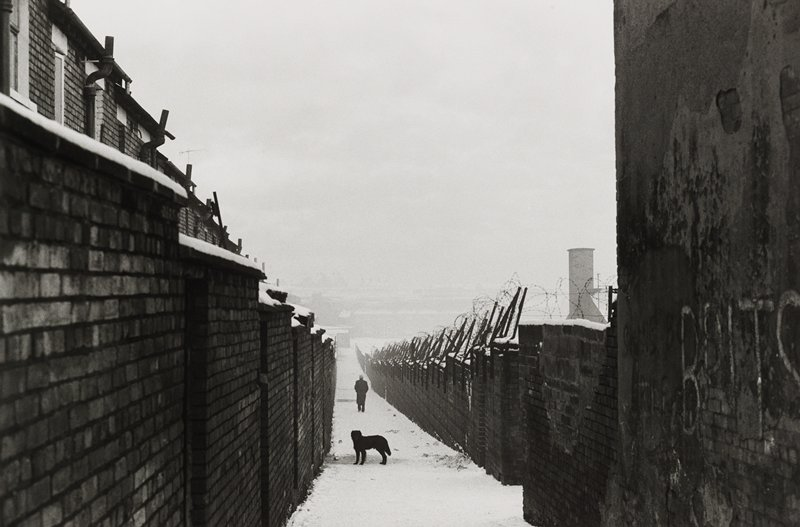 black dog on a snowy walkway with a person in the background; brick walls either side of the path; barbwire fence on right wall