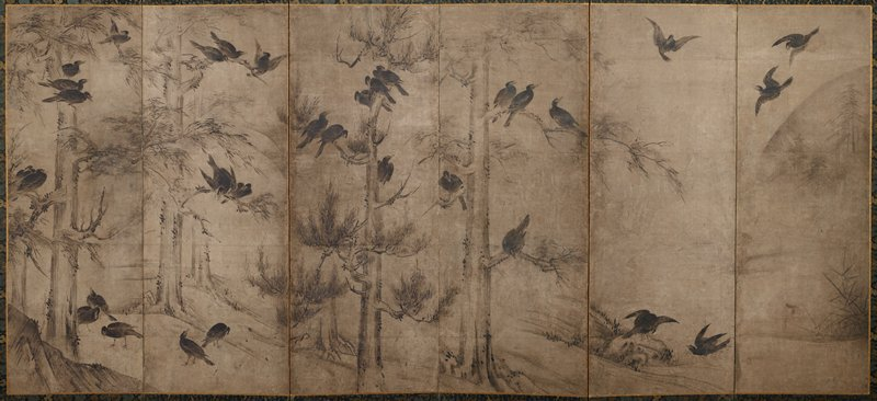Magpies on pine, blackbirds on grey or white.