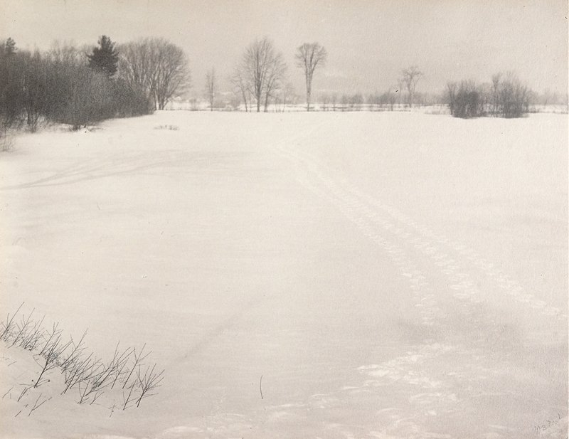 [Fryeburg, Maine] snowy open field with tracks; bare trees at L and in background