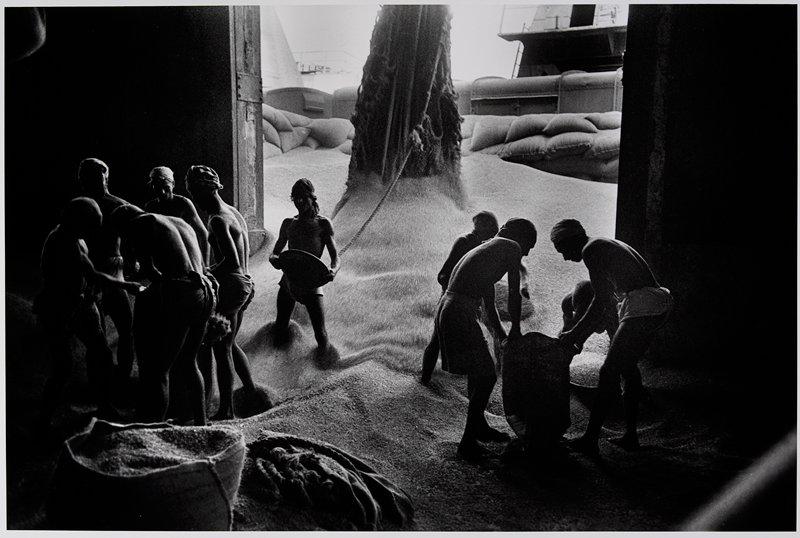 men standing on large pile of grain, filling sacks